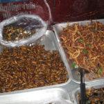 バッタやコオロギなどの虫を売る屋台
