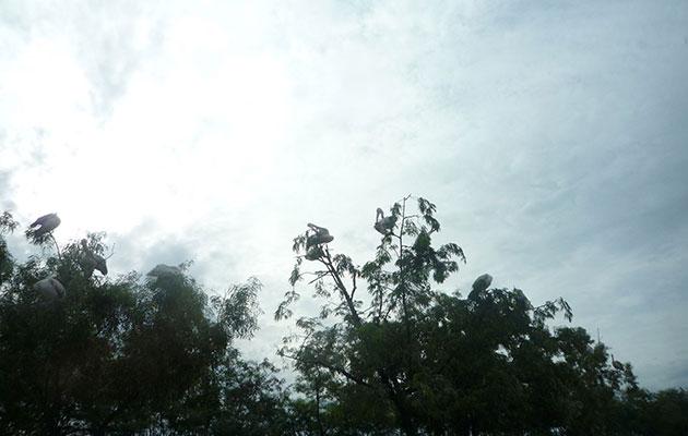 雨上がりに広がる綺麗な青空
