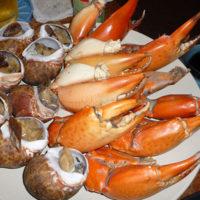 タイではシーフードが豊富でカニ爪と貝が美味い